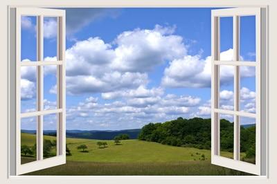 luftqualität zuhause verbessern